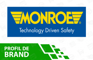 featured image amortizoare monroe